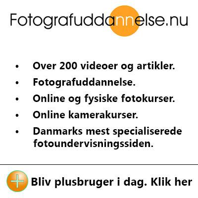 Online fotoundervisning